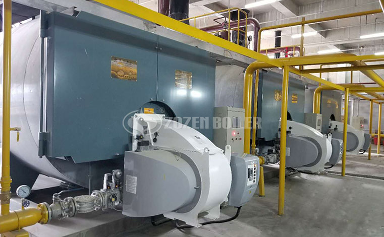 7MW WNS series gas-fired hot water boiler for OUTLET Mall