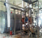 wood pellet hot water boilers | reliable steam boiler